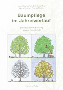 Baumpflege im Jahresverlauf: Schnittzeiten im Einklang mit dem Naturschutz