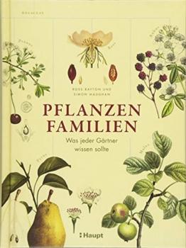 Pflanzenfamilien: Was jeder Gärtner wissen sollte
