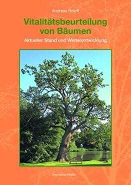 Vitalitätsbeurteilung von Bäumen: Aktueller Stand und Weiterentwicklung