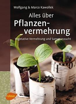 Alles über Pflanzenvermehrung: Vegetative Vermehrung und Samenanzucht - 1