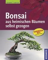 Bonsai aus heimischen Bäumen selbst gezogen - 1