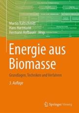 Energie aus Biomasse: Grundlagen, Techniken und Verfahren - 1