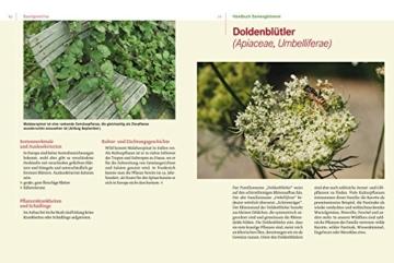 Handbuch Samengärtnerei. Sorten erhalten. Vielfalt vermehren. Gemüse genießen. - 3