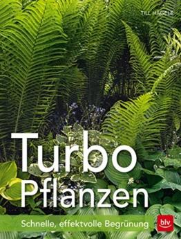 Turbo-Pflanzen: Schnelle, effektvolle Begrünung - 1