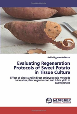 Evaluating Regeneration Protocols of Sweet Potato in Tissue Culture: Effect of direct and indirect embryogeneic methods on in-vitro plant regeneration and tuber yield in sweet potato - 1