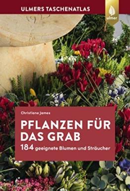Pflanzen für das Grab: 184 geeignete Blumen und Sträucher - 1