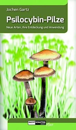 Psilocybin-Pilze: Neue Arten, ihre Entdeckung und Anwendung - 1