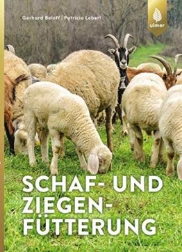 Schaf- und Ziegenfütterung: Strategien für Landschaftspflege, Fleisch- und Milcherzeugung - 1