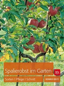 Spalierobst im Garten: Sorten, Pflege, Schnitt