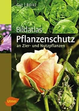 Bildatlas Pflanzenschutz an Zier- und Nutzpflanzen: Krankheiten und Schädlinge erkennen, vorbeugen und richtig behandeln