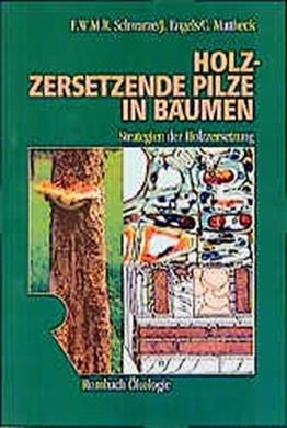Holzzersetzende Pilze in Bäumen: Strategien der Holzzersetzung (Rombach Wissenschaft Ökologie)