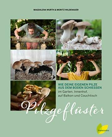 Pilzgeflüster: Wie deine eigenen Pilze aus dem Boden schießen