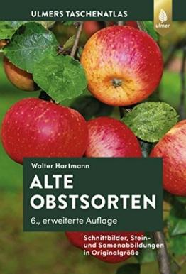 Alte Obstsorten: Schnittbilder, Stein- und Samenabbildungen in Originalgröße