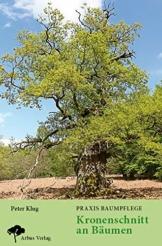 Praxis Baumpflege - Kronenschnitt an Bäumen: Kronenschnitt entsprechend der Baumentwicklung