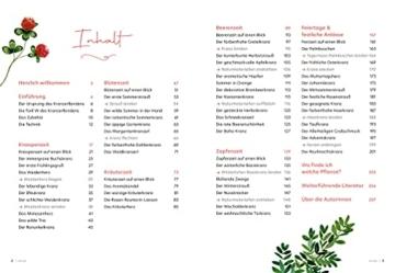 Das Kranzerlbuch: Natürlich schmücken mit Kränzen, Sträußen und Gestecken